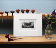 Load image into Gallery viewer, Molly Lemon Wood Engraving Cow