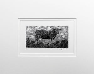 Molly Lemon Wood Engraving Cow
