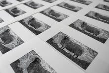 Load image into Gallery viewer, Molly Lemon Wood Engraving Sheep