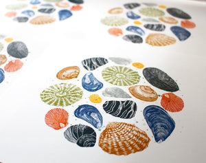 Molly Lemon Wood Engraving Seashells