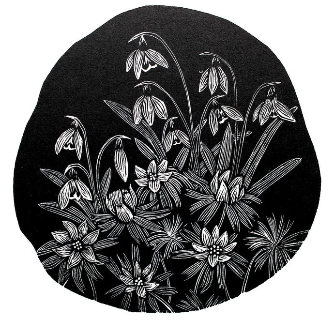 Molly Lemon Wood Engraving Snowdrops