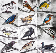 Load image into Gallery viewer, Pack of 12 Bird Cards *Stock Clearance*