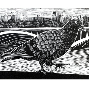 Molly Lemon Wood Engraving Pigeon