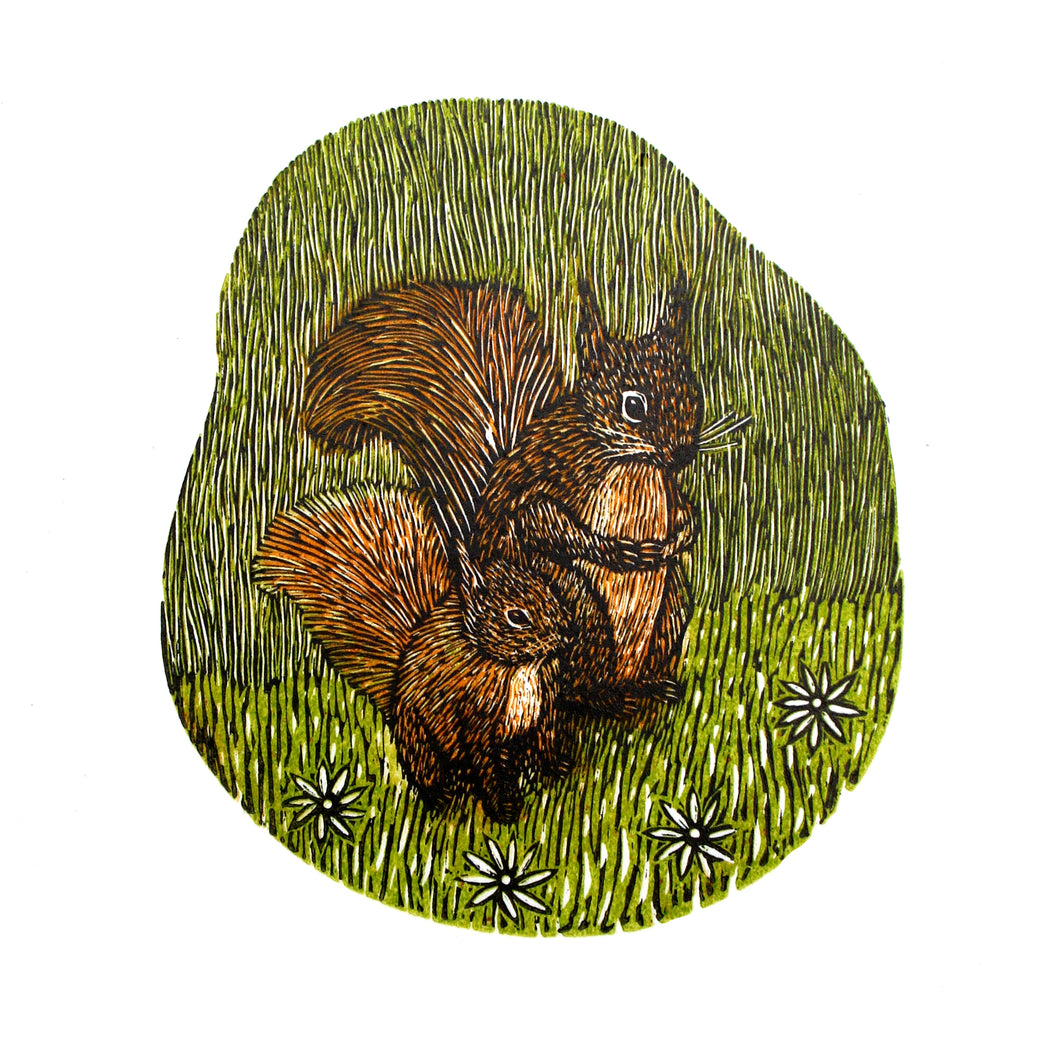 Red Squirrels 2018