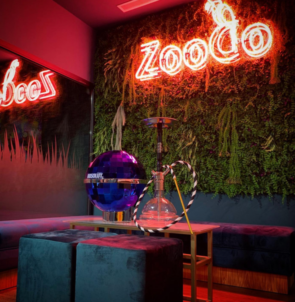 Zooco Music Drinks