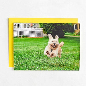 Running Dog Birthday Card
