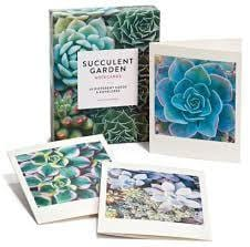 Succulent Gardens Assorted Blank Notecards 20