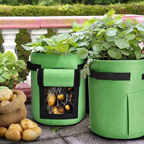 Potato Planting Pot with 2 sizes