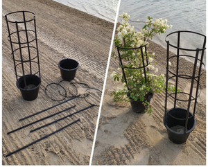 Pot with Stand for Climbing Plants