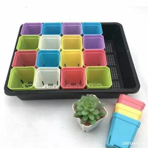 Square plastic plant flower seedling tray with 20 pot