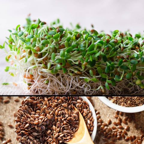 Flax sprouting seeds 100g