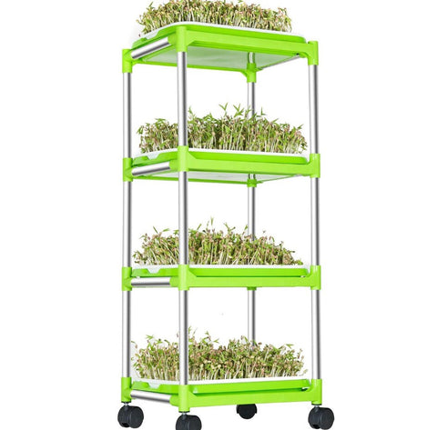Single tray seeds microgreens and sprouts