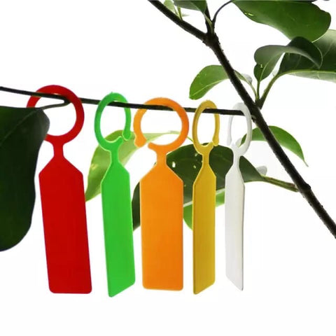 Colored Plants tags ring label package 100 pcs
