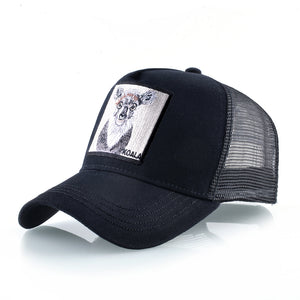 Koala Negro - WildLife Caps