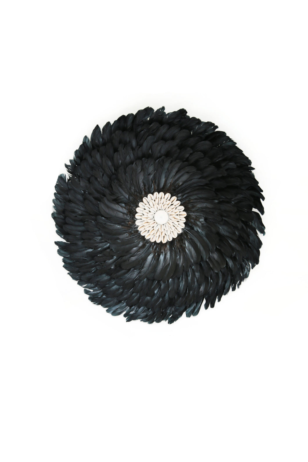 BLACK FEATHERS AND SHELL  WALL DECOR SMALL