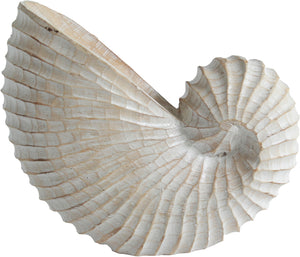 WOODEN SHELL DECOR LARGE