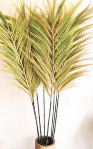 LIGHT GREEN PAMPAS GRASS PALM LOOK