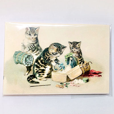 Cat Stories – Set de postales
