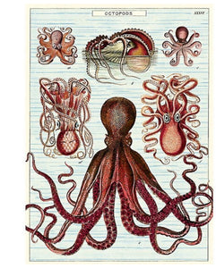 Cavallini Octopus Wrapping Paper Poster