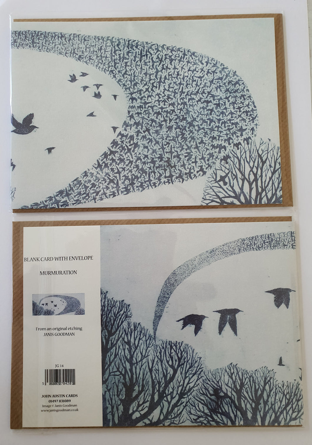 Father's Day Card - Murmuration by Janis Goodman