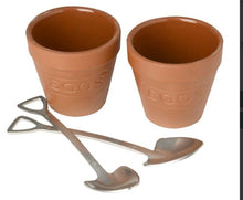 Load image into Gallery viewer, Flower Pot Set of 2 Egg Cups & Spoons