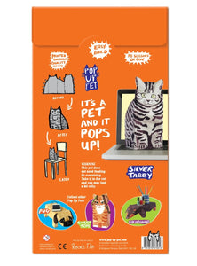 Pop Up Pet (Silver Tabby)