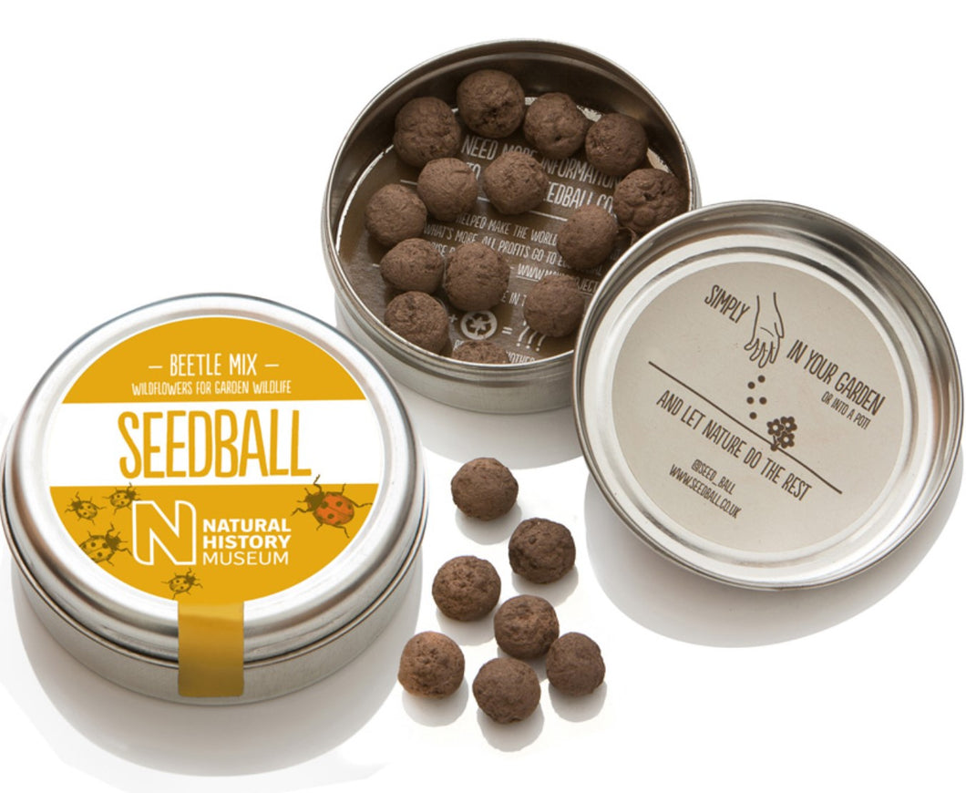 Seedball Tin Beetle Mix