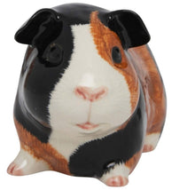 Load image into Gallery viewer, Guinea Pig Money Box by Quail (Multi)