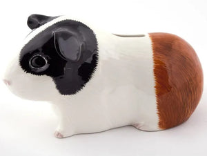 Guinea Pig Money Box (Tri) by Quail