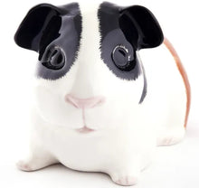 Load image into Gallery viewer, Guinea Pig Money Box (Tri) by Quail