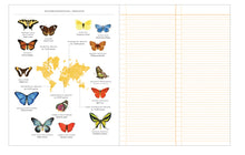 Load image into Gallery viewer, Observer's Notebook (Butterflies)