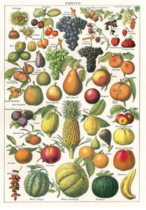 Cavallini Fruits Wrapping Paper Poster