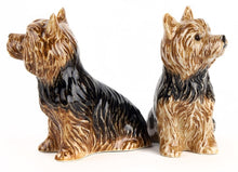 Load image into Gallery viewer, Yorkshire Terrier Salt & Pepper Set by Quail