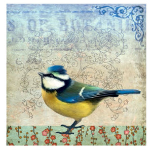 Card - Blue Tit by Fiona Watson