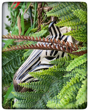 Load image into Gallery viewer, Zebra Wall Vase by Quail (large)