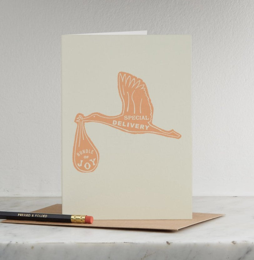 Special Delivery card by Pressed & Folded