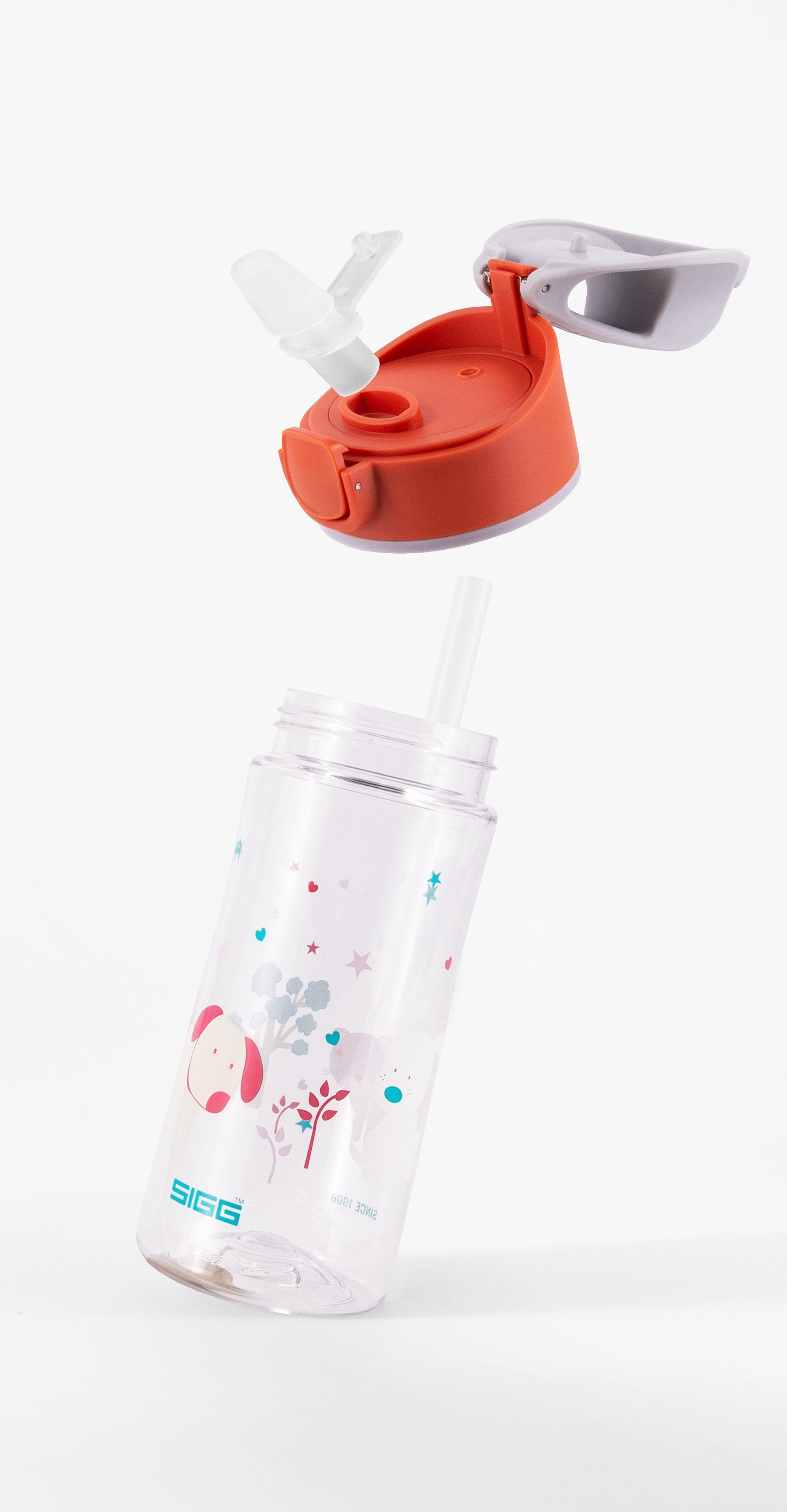 0.45 SIGG 90 Miracle Kids Dinosaur Friend