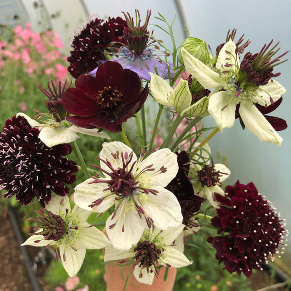 Mixed Bouquet from Moorland Flowers