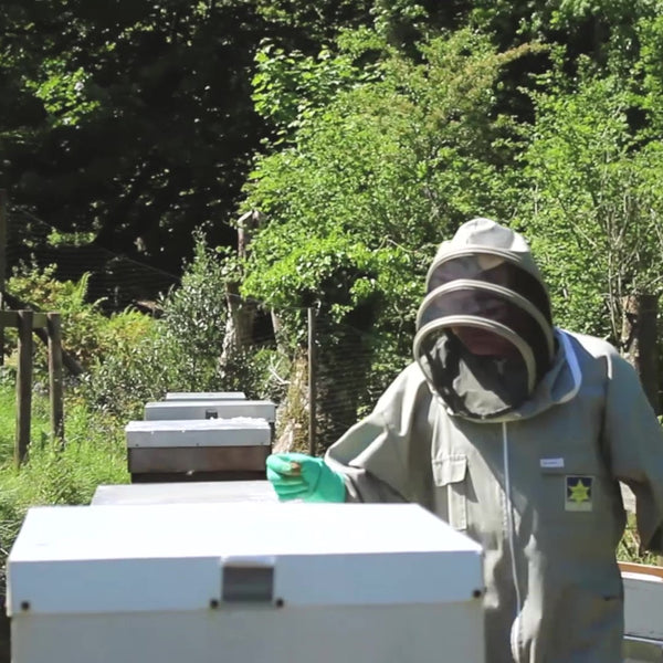 Roger Round Bee Keeper