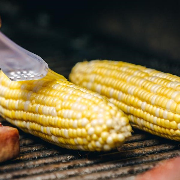 Sweet Corn on a Barbeque