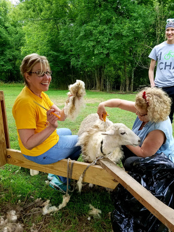 Schedule a Class in Knit, Crochet, Sewing, Wool processing, Spinning, Dying Yarn or Sheep shearing