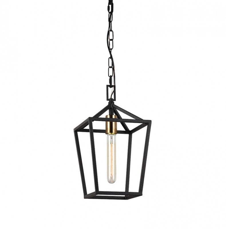Rusty Black + Aged Gold Brass 1 Light Pendant