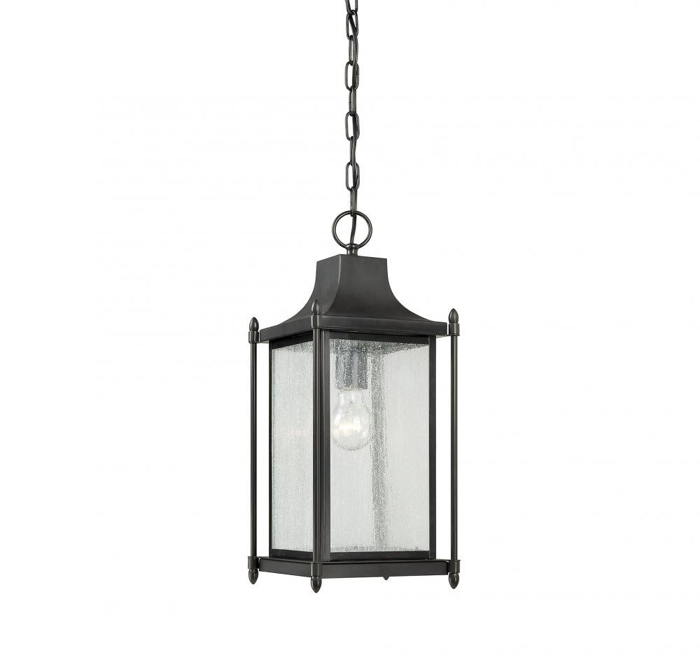 Black Transitional 1 Light Hanging Lantern, Lighting, Laura of Pembroke
