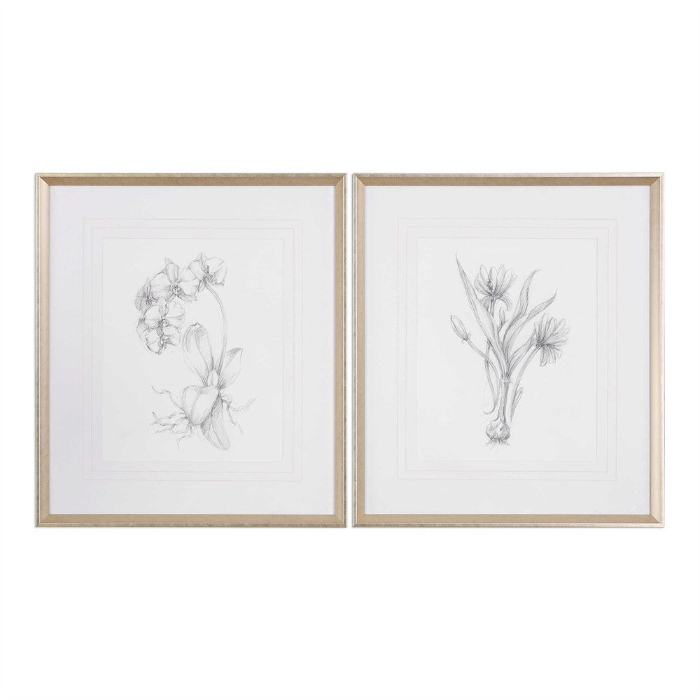 Botanical Sketch Prints, Home Accessories, Laura of Pembroke