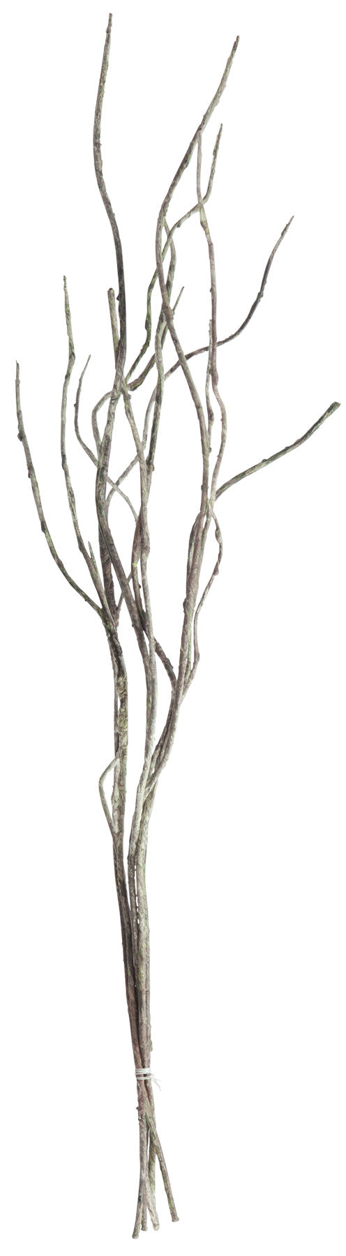 Twigs, Home Accessories, Laura of Pembroke