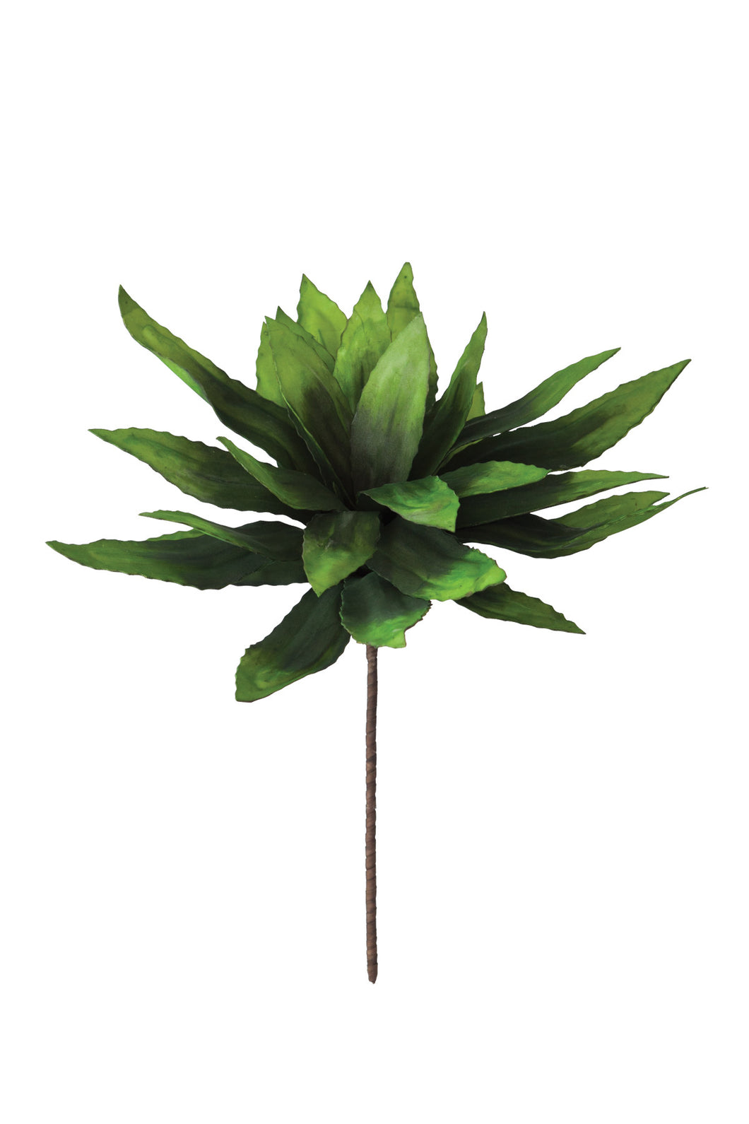 Green Stem, Home Accessories, Laura of Pembroke