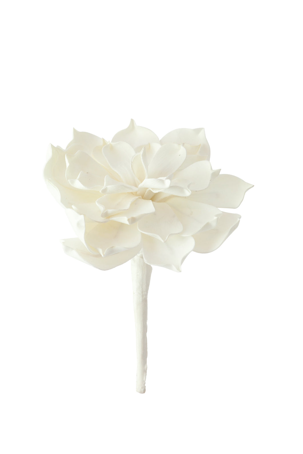 White Flower, Home Accessories, Laura of Pembroke