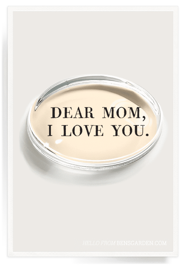 Dear Mom, I Love You Crystal Oval Paperweight, Gifts, Ben's Garden, Laura of Pembroke