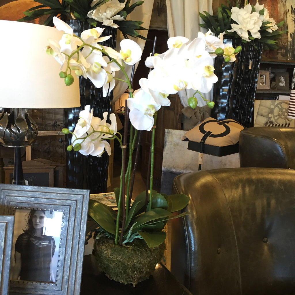 "30"" Orchid Drop In Home Accessories Laura of Pembroke - Laura of Pembroke Canton Ohio Boutique"