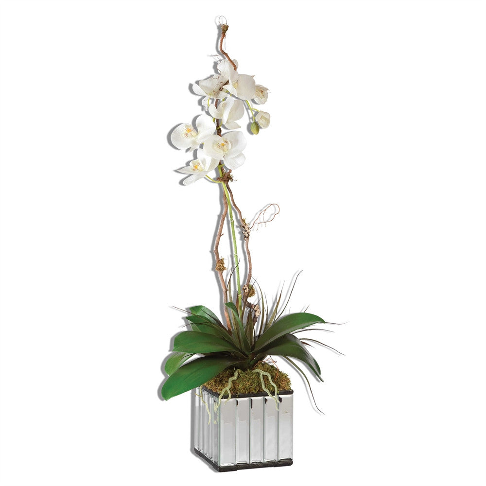 Kaleama Orchids White, Home Accessories, Laura of Pembroke